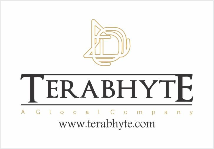 TeraBhyte Africa Services